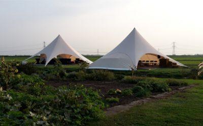 Starshades bruiloft Nieuw-Lekkerland